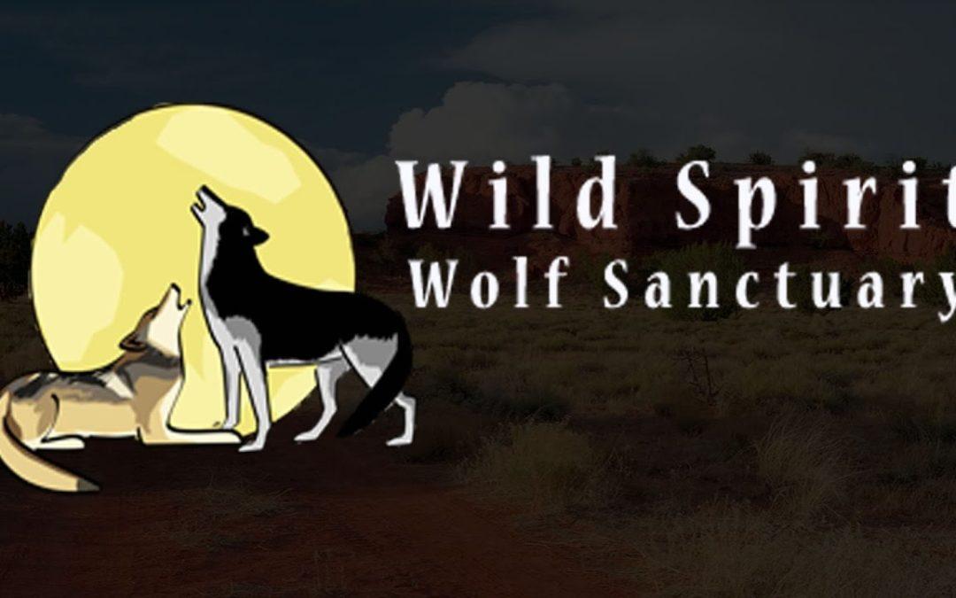 George R.R. Martin – Wild Spirit Wolf Sanctuary